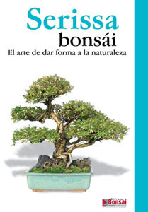 Guia bonsai serissa