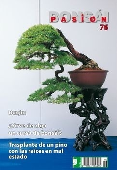 Bonsai Pasion Nº 76