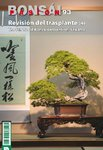 Bonsai Pasion Nº 93